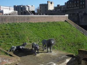 Tower был еще и зоопарком!