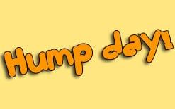 перевод hump day