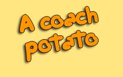 перевод coach potato