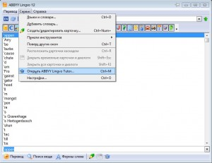 -Abbyy-Lingvo-Tutor-300x231 Как пользоваться словарем ABBYY Lingvo?