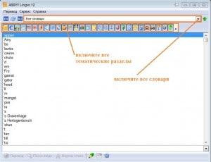 -настройка-300x230 Как пользоваться словарем ABBYY Lingvo?