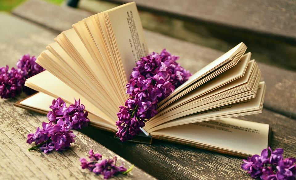 Чтение книг по методу Ильи Франка