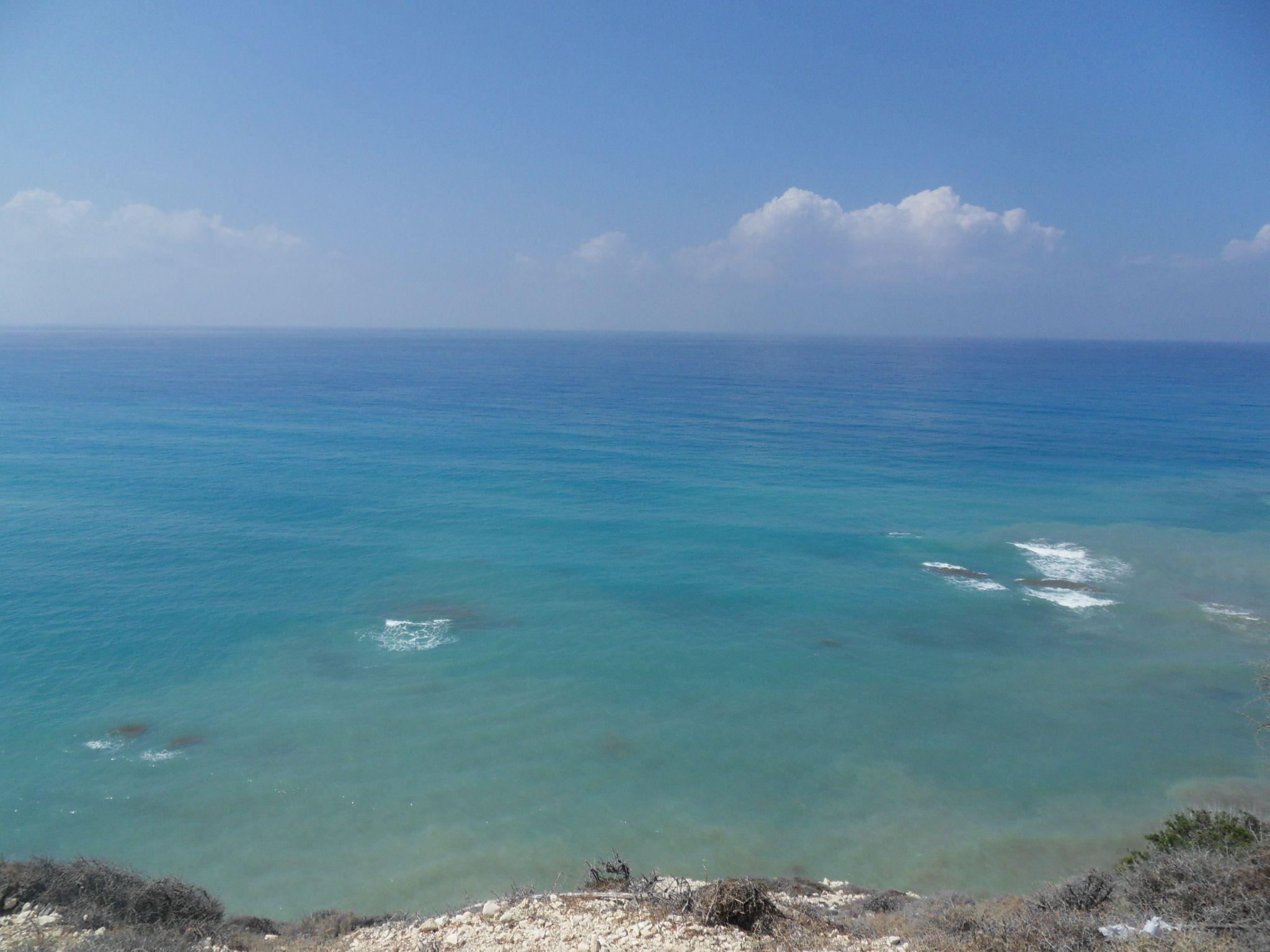 SDC12483 Мой отдых на Кипре
