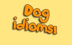 -со-словом-dog Идиомы со словом «dog»